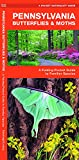 Pennsylvania Butterflies & Moths: A Folding Pocket Guide to Familiar Species (Wildlife and Nature Identification)