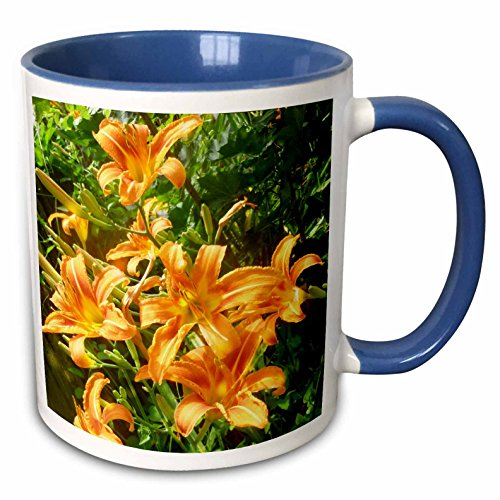 3dRose Renderly Yours Florals - Beautiful Orange Tiger Lilli
