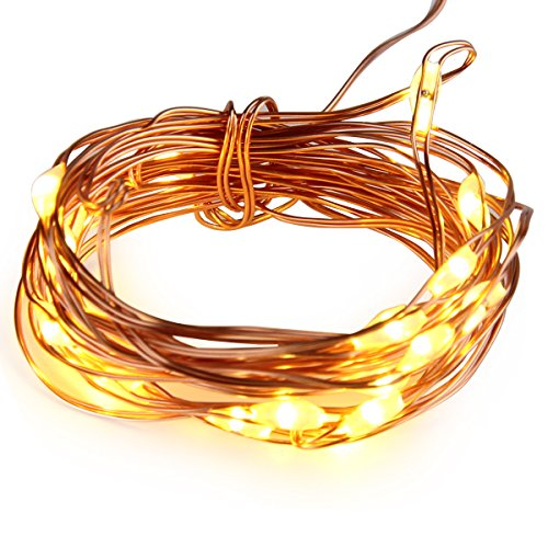 7ft/2M 20 LED AA Battery Operated Powered Copper Wire LED