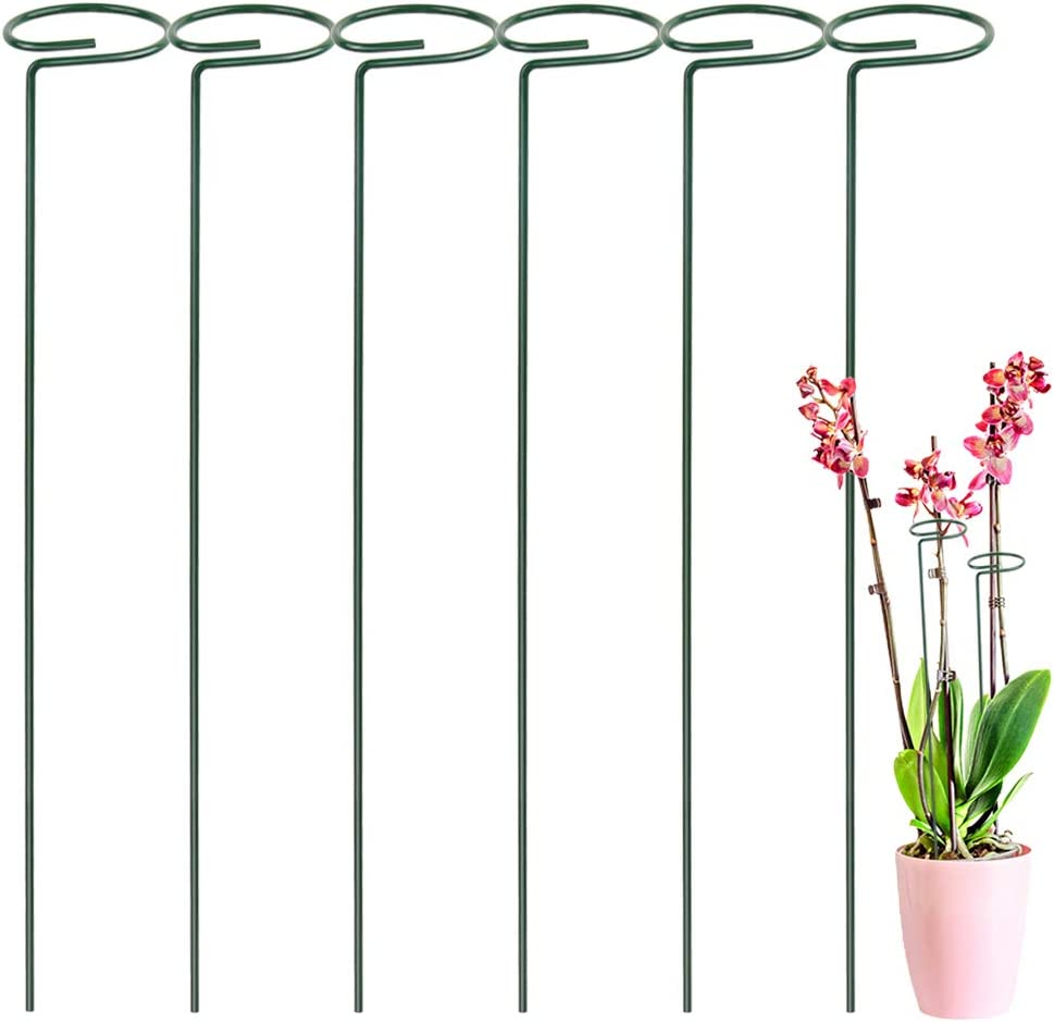 LEOBRO 6 Pack Plant Stakes for Flowers, Metal Single Stem Plant Support, Garden Plant Stakes for Amaryllis Orchid Lily Rose Tomatoes, Dark Green, 40.5 CM/15.9 INCH