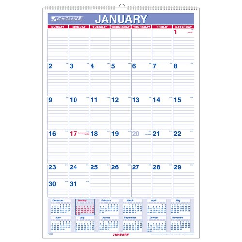 (AT-A-GLANCE Monthly Wall Calendar, 2010 (PM328))