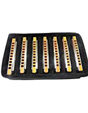 East top 10 Hole Professional Blues Harp Musical Instrument