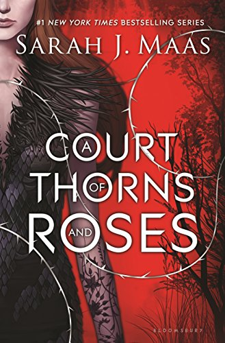 A Court of Thorns and Roses (The Last Ten Seconds Of Life Merch)
