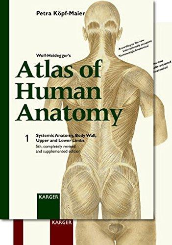 Wolf-Heidegger's Atlas of Human Anatomy. Complete Set. English Nomenclature