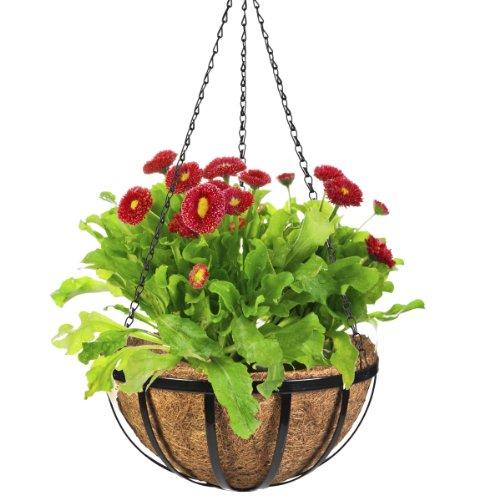 CobraCo Black 14-Inch English Flatwire Hanging Basket - Cobraco Basket Hanging