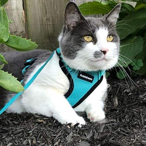rabbitgoo Cat Harness and Leash for Walking, Escape Proof Soft Adjustable Vest Harnesses for Cats, Easy Control Breathable Reflective Strips Jacket 31