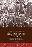 Afro-American Life in Georgetown County, Ramona LaRoche, 0738503479