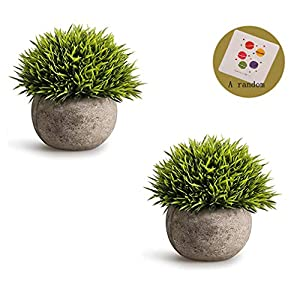 SRK Plastic Mini Artificial Plants Fake Green Colorful Realistic Grass Flower Shrubs with Gray Pot for Home Office Coffee House Decorations Indoor Multicolored 21