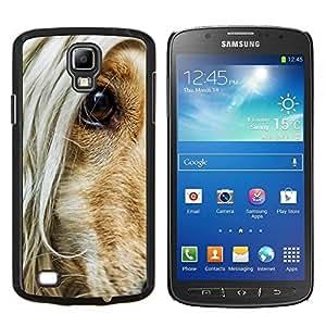 Basset Hound Dog Hair yeux orange Canine - Metal de aluminio y de plástico duro Caja del teléfono - Negro - Samsung i9295 Galaxy S4 Active / i537 (NOT S4)