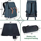 Insulated Cooler Backpack, Picnic Bag for 4 Person