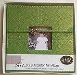 6'' X 6'' Accordion Mini Album - Kiwi