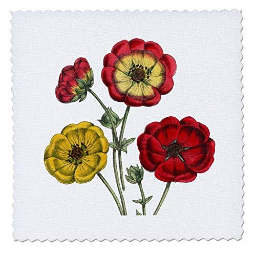 3dRose Cassie Peters Flowers - Vintage Flowers - 25x25 inch Quilt Square (qs_307003_10)