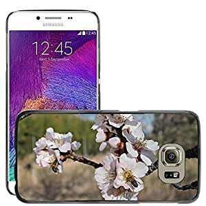 Hot Style Cell Phone PC Hard Case Cover // M00115818 Almond Flower Bees Pollen Honey // Samsung Galaxy S6 (Not Fits S6 EDGE)
