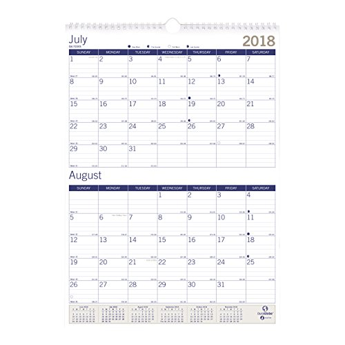 Blueline 2018-2019 DuraGlobe Academic Two-Month Wall Calendar, 12