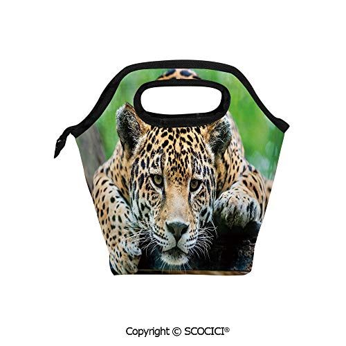 Wild Animals Lunch Box - Picnic Food Insulated Cooler Tote Lunch Bag South American Jaguar Wild Animal Carnivore Endangered Feline Safari Image Organizer Lunchbox for Women Men Kids.