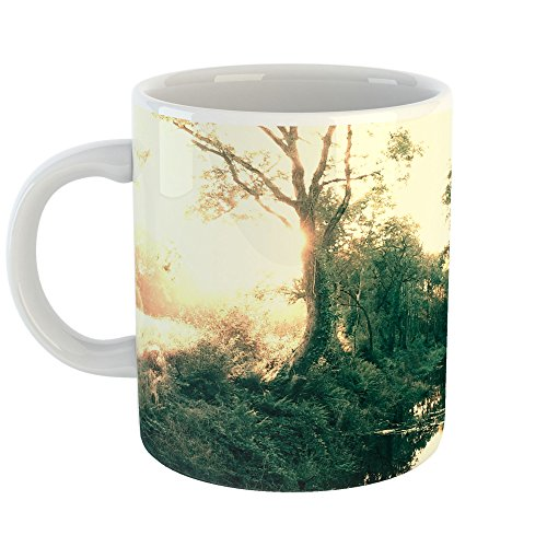 Westlake Art - Forest Nature - 11oz Coffee Cup Mug - Modern Picture Photography Artwork Home Office Birthday Gift - 11 Ounce (AC42-3675C) - Finest Reserve Port