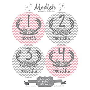 12 Monthly Baby Stickers, Deer Antlers, Flowers, Baby Girl, Baby Belly Stickers, Baby Month Stickers, First Year Stickers Months 1-12, Pink, Grey, Gray, Chevron, Deer Antlers, Girl 2