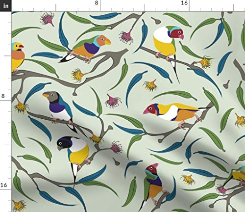 Rainbow Finch Fabric - Australian Gouldian (Rainbow) Finches Birds Australia Endangered Species Animals Print on Fabric by the Yard - Basketweave Cotton Canvas for Upholstery Home Decor Bottomweight