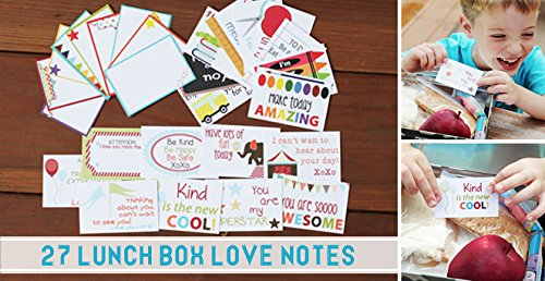 Designer Lunchbox Notes - 2 Packs of 27 Cards - Multi by Sprinkled Joy (Image #4)