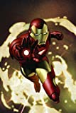 Iron Man Vol. 1: Extremis