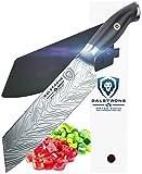 #9: DALSTRONG Santoku Knife - Omega Series - 7