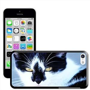 Fancy A Snuggle 'cierre-up de gato' carcasa rígida para Apple iPhone 5C