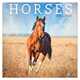 Quality 2019 Horses Calendar with Free Rock Music MEMOROBILIA (Key Chain, Pen,Magnet,Card ETC.) Calendar Planner,Calendar Wall,Pocket, Monthly,DO IT All,Gallery Edition