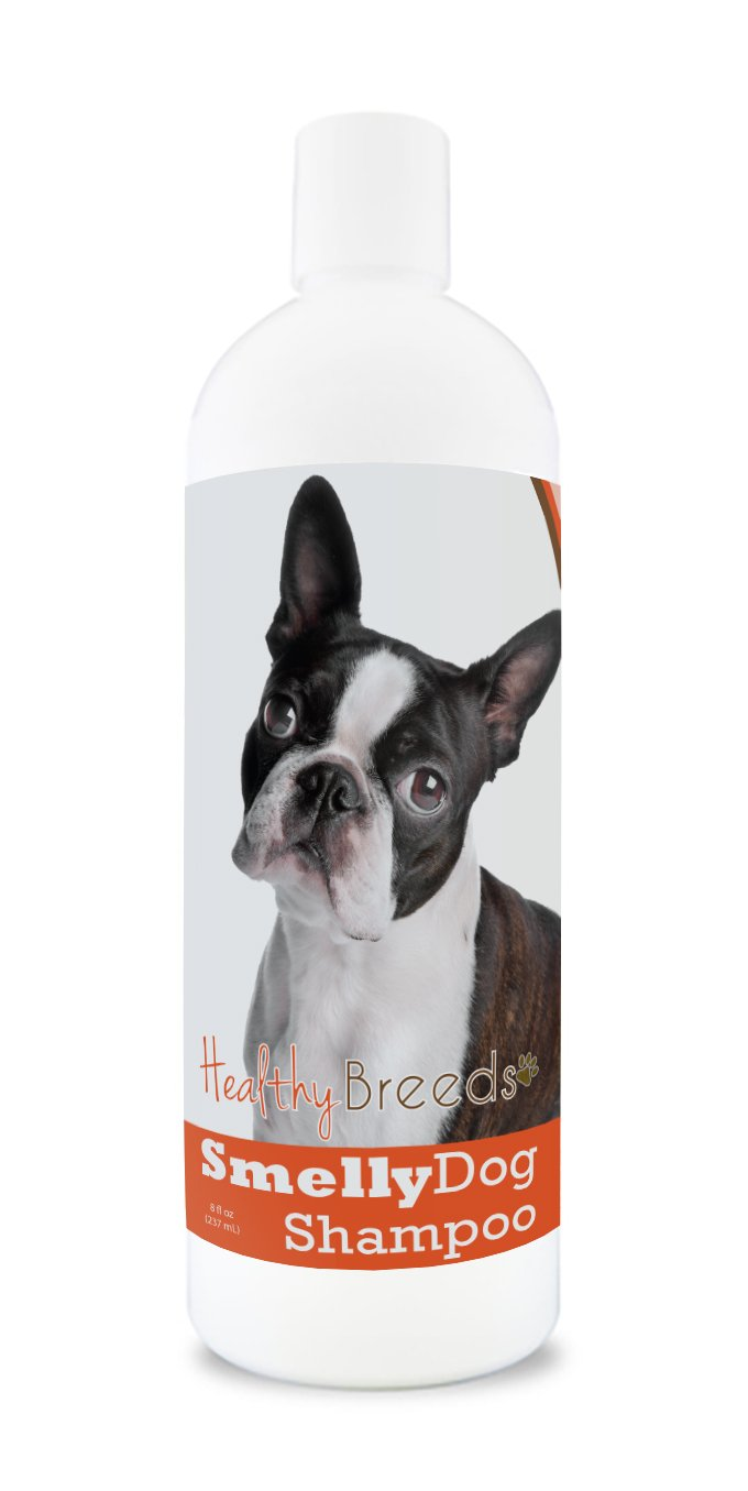 Healthy Breeds Smelly Dog Deodorizing Shampoo & Conditioner with Baking Soda for Boston Terrier Over 200 Breeds 8 oz Hypoallergenic for Sensitive Skin