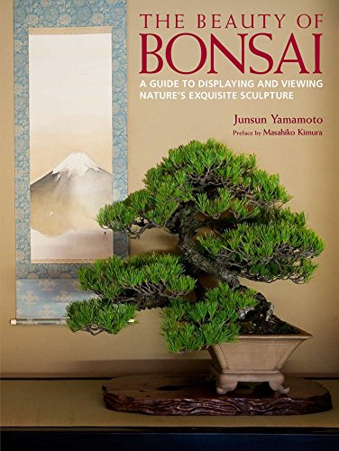 The Beauty of Bonsai: A Guide to Displaying and Viewing Nature's Exquisite Sculpture by Kodansha International