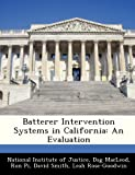 Batterer Intervention Systems in Californi, Dag MacLeod, 1249919975