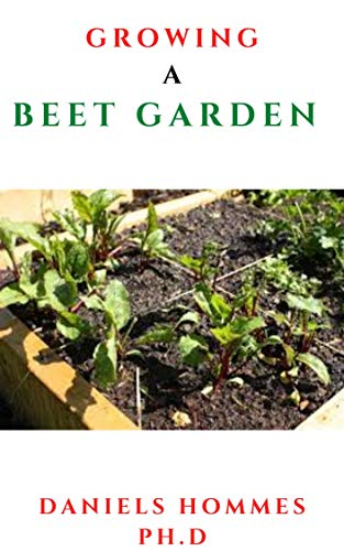 GROWING A BEET GARDEN: Comprehensive Guide From Seed to Harvest