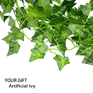 YOUR GIFT Artificial Ivy Green Leaves Vine Fake Ivy Wreaths Wedding Arch/Floral/Indoor Outdoor/Front Porch/Imitation of Green Plants 12 Strands 84 ft 2
