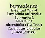 Creation Pharm Anti-Fungal Essential Nail Oil