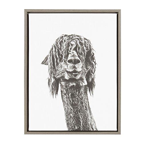 Kate and Laurel Sylvie Curly Hair Alpaca Portrait 18x24 Gray Framed Canvas Wall Art by Simon Te -