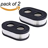 HEYZLASS 2Pack 593260 798452 Air Filter Cartridge, for Briggs & Stratton 550E thru 725EXI Series Engine, Lawn Mower Air cleaner
