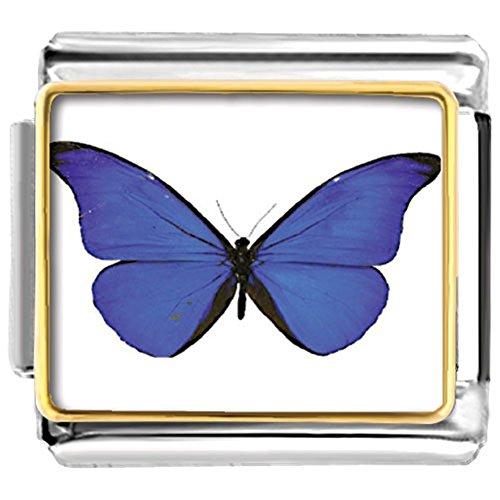 Butterfly Italian Charm Bracelet Link - LuckyJewelry Butterfly Etched Italian Charms Sale Cheap fit Nomination Link Bracelet