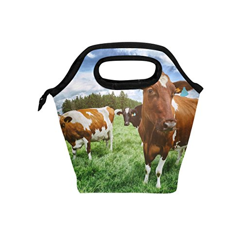 ALAZA Herd Cows Nature Field Farm Insulated Lunch Tote Bag Cooler,Reusable Picnic Handbag Zipper Travel Lunchbox Bags for School Office -