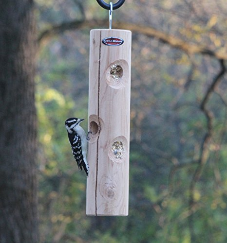 Kettle Moraine Cedar Suet Plug Log (Choice Peanut Suet Logs)