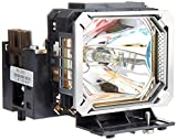 Canon RS-LP03 Replacement Projector Lamp