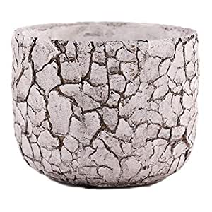Little Green House White Stoneware Pot for Flowers