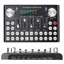 ALPOWL Mini Sound Mixer Board, Portable Audio Mixer for karaoke, Live Sound Card With Dual DSP Noise Reduction Chip…