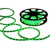 DELight 50 FT Green 2 Wire LED Rope Light Indoor Outdoor Home Holiday Valentines Party Restaurant Cafe Decoration