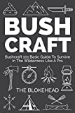 Bushcraft : Bushcraft 101 Basic Guide To Survive In The Wilderness Like A Pro (The Blokehead Success Series)