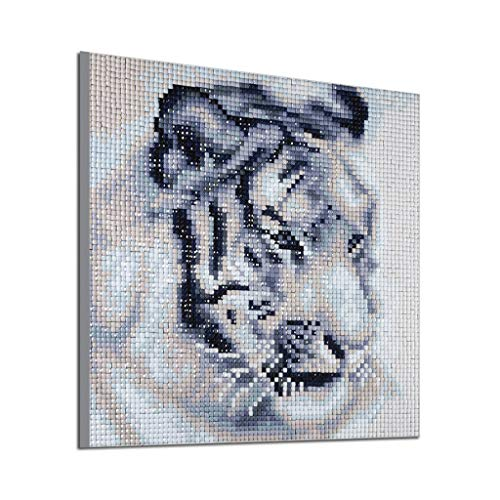 5D DIY Diamond Painting Kit Cross Stitch Embroidery Full Drill Rhinestone Oil Canvas Cute Realistic Animal Pattern Creative No Fade Handmade Arts Craft Plane Wall Sticker Decor Gift (A, 2525cm)