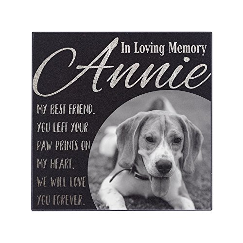 P Lab Personalized Granite Pet Memorial Stone w 'Your Pet Photo' Customized Tombstone - Loss of Pet Gift- Indoor Outdoor Dog or Cat For Garden Backyard 6'' x 6'' #1 by Personalization Lab