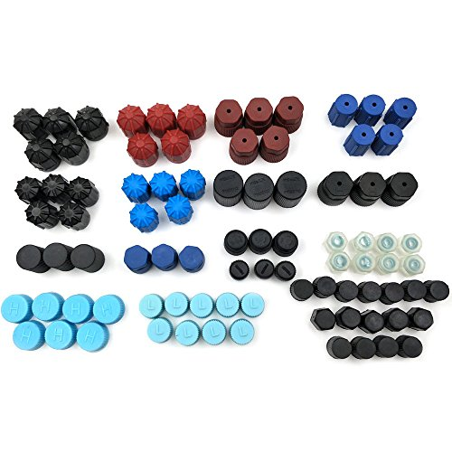 Nikauto 88Pcs/Lot 18 Kinds of Automotive Air Conditioner Valve Caps Universal R134 R12 Air Valve Cap Dust Cover Set for Car Air Conditioning Reparing by Nikauto (Image #2)