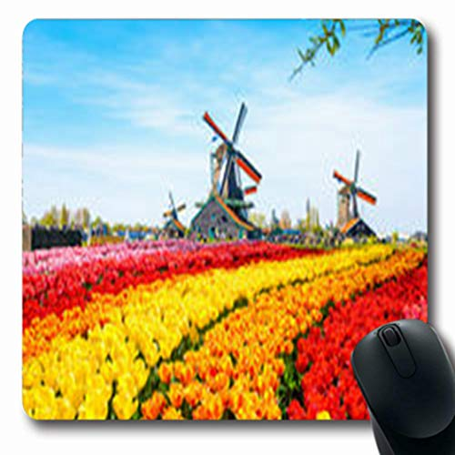 Pandarllin Mousepads History Tulips Dutch Windmills Wheel Houses Parks Outdoor Wooden Oblong Shape 7.9 x 9.5 Inches Oblong Gaming Mouse Pad Non-Slip Rubber Mat