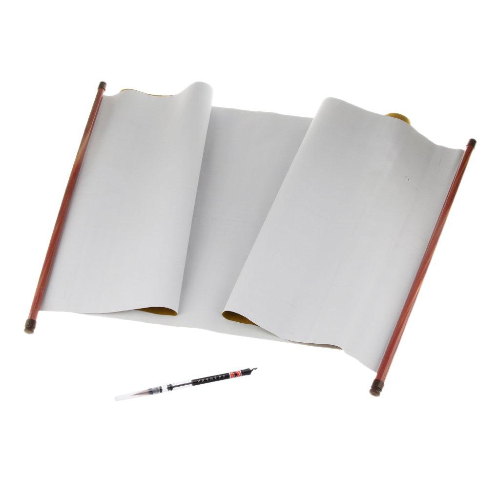 F Fityle Set Calligrafia Riscrivibile per Calligrafia Clloth Magic Cloth E Penna per Calligrafia
