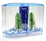 Angelwing Aquarium Betta Tank Dividers Twin Bow Front Tank Aquarium Kit Desk