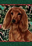 Best of Breed Dachshund (Long Haired, Red): Indoor/Outdoor House Flag (Holiday Treats Serie. For Sale